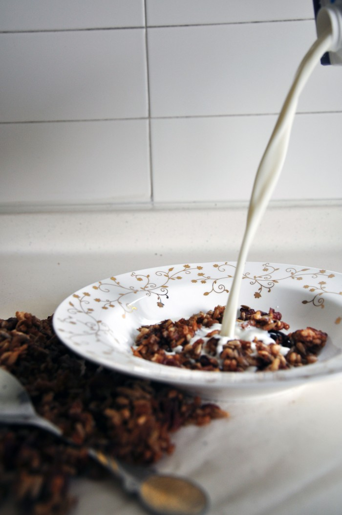 Oat-less_Granola_4